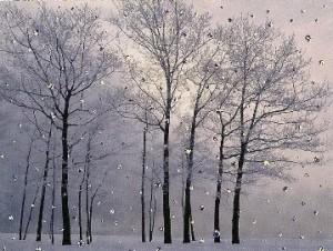 winter_tree_card1