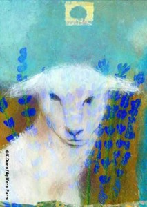 Katherine Dunn, artist - Young Sheep in Lavender