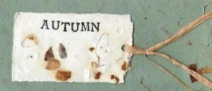 tn_weathergram_autumn