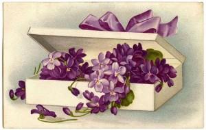 tn_Violets-Image-Vintage-GraphicsFairy1