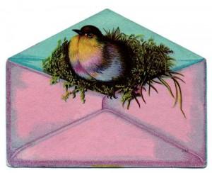 tn_Bird-Envelope-gf