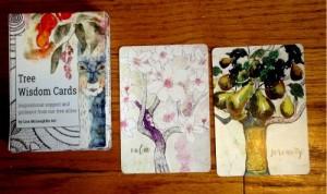 tn_Tree Wisdom Cards_1