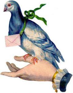 tn_Carrier-Pigeon_2-GF