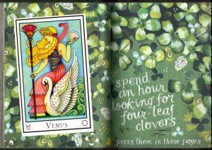 tn_Venus_wildflower book